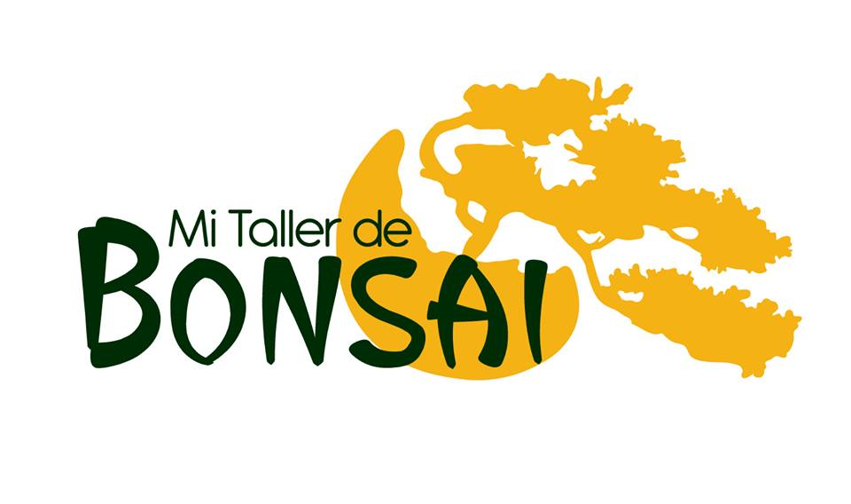 Canal de videos Mi Taller de Bonsai
